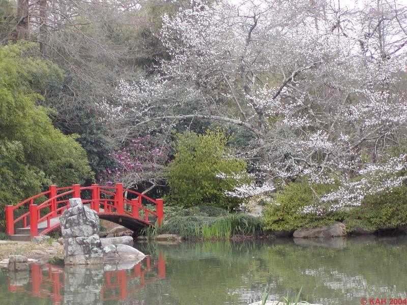 Japanese Gardens. Botanical Gardens Birmingham, AL